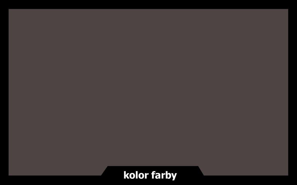 Remmers Farba do drzwi mebli ocynk TYTONIOWY 5 L